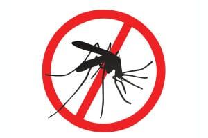 03609g-prevenir-dengue